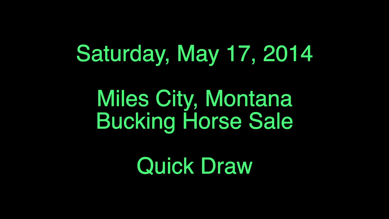 Bucking Horse Sale - Quick Draw